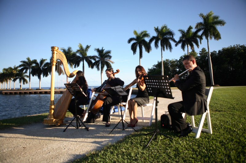 Flute, Violin, Cello & Harp Quartet